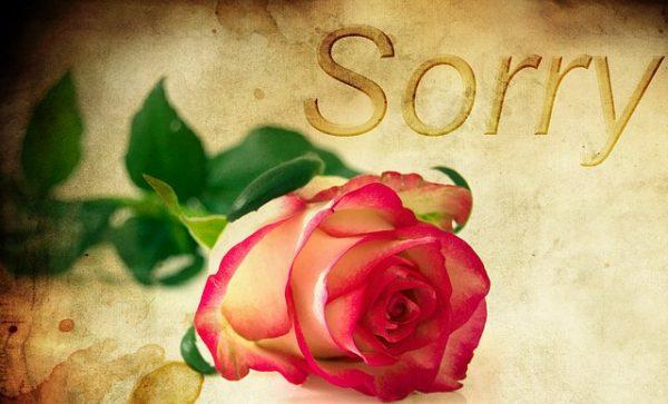 sorry_1