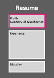 resume_combination_Profile